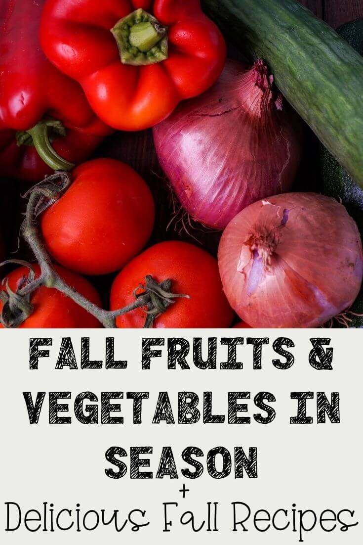 Fall Fruits and Vegetables In Season and Delicious Fall Recipes You Will Love