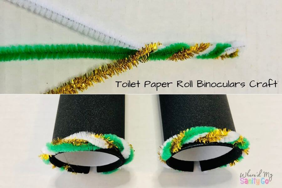 Toilet Paper Roll Binoculars Craft