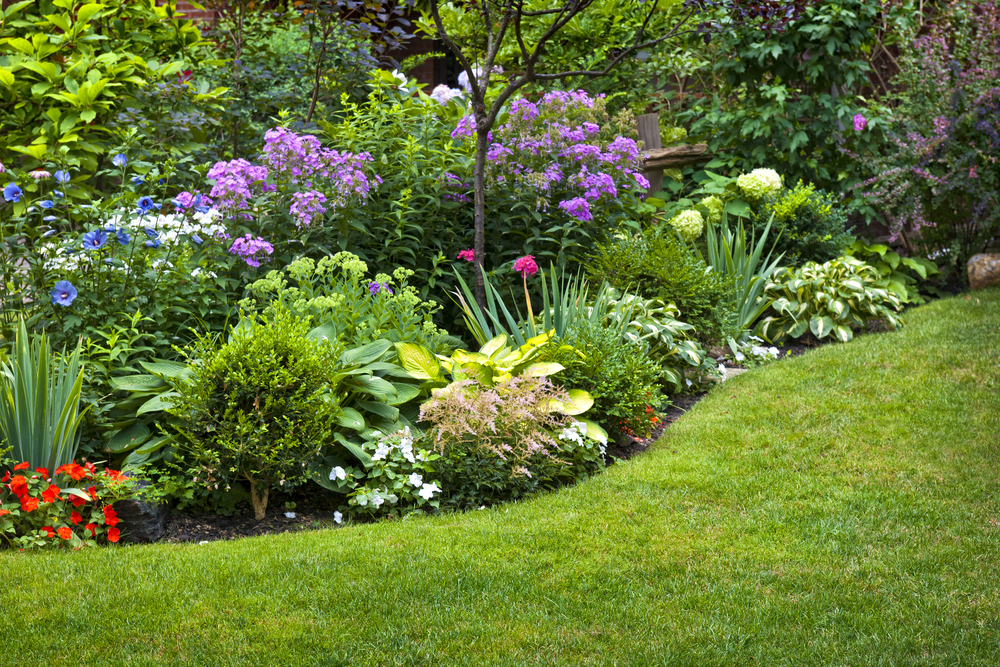 beautiful landscape garden next to grass full of yellow, purple and blue flowers and foliage